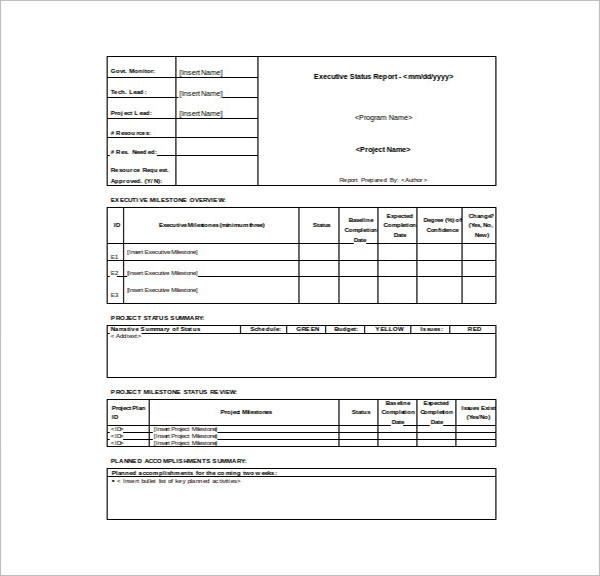 Executive Report Sample Template