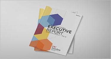 Executive Report Templates