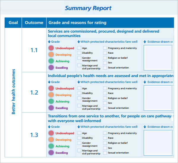 Free Summary Report Template