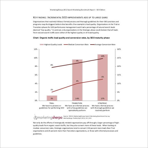 General SEO Analysis Report Format