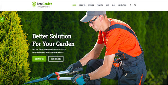 Landscaping Company Blog Template