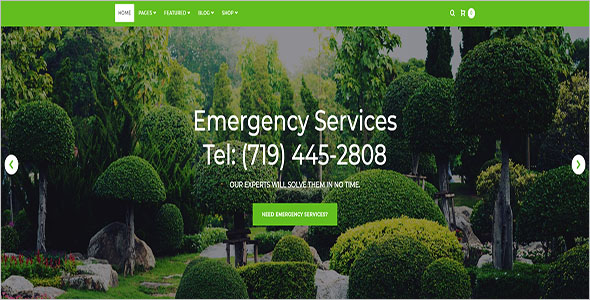 Landscaping Service Blog Template