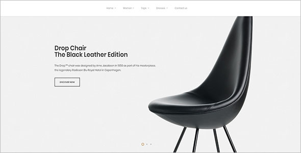 Multi Purpose Website Template