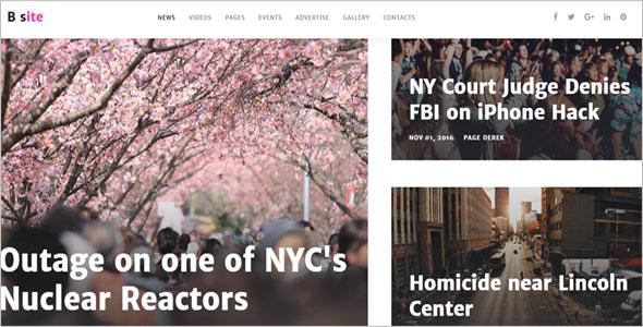 News Blog Site Theme