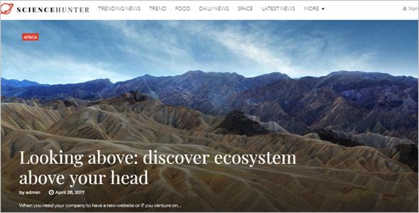 News Blog Web Theme