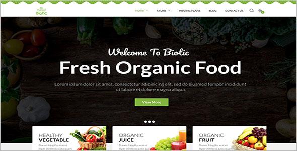 Organic Food Blog WordPress Theme