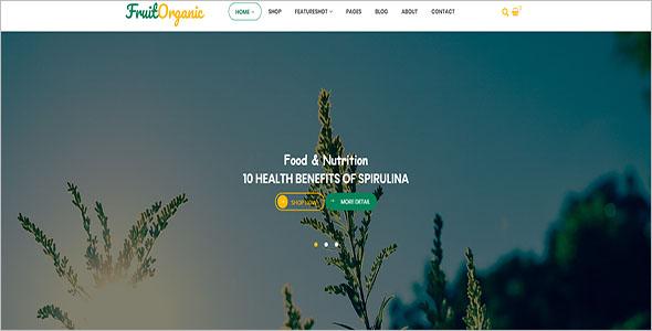 Organic Food Magento Template
