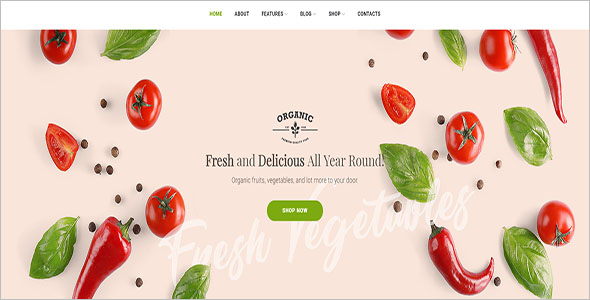 Organic Food Store Woocommerce Template