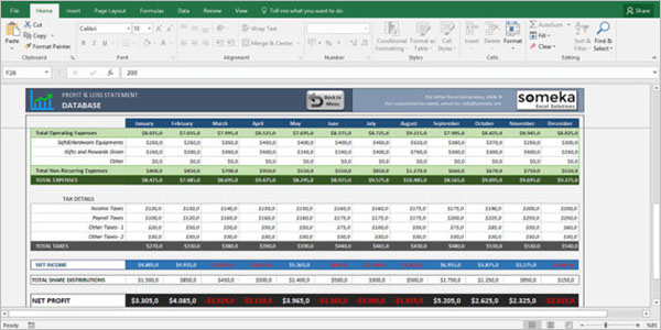 Profit & Loss Statement built in Excel