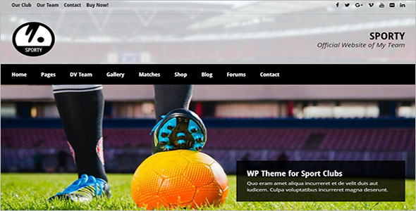 Responsive Sports Website Template