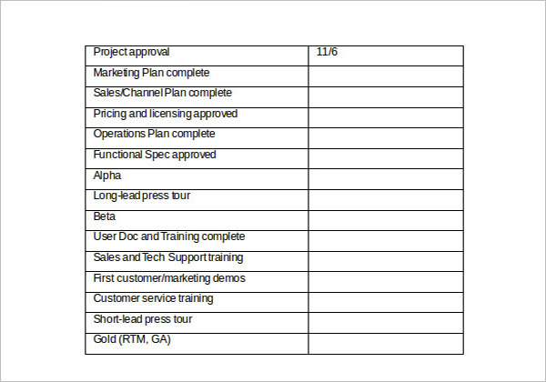 Sample Product Strategy Template