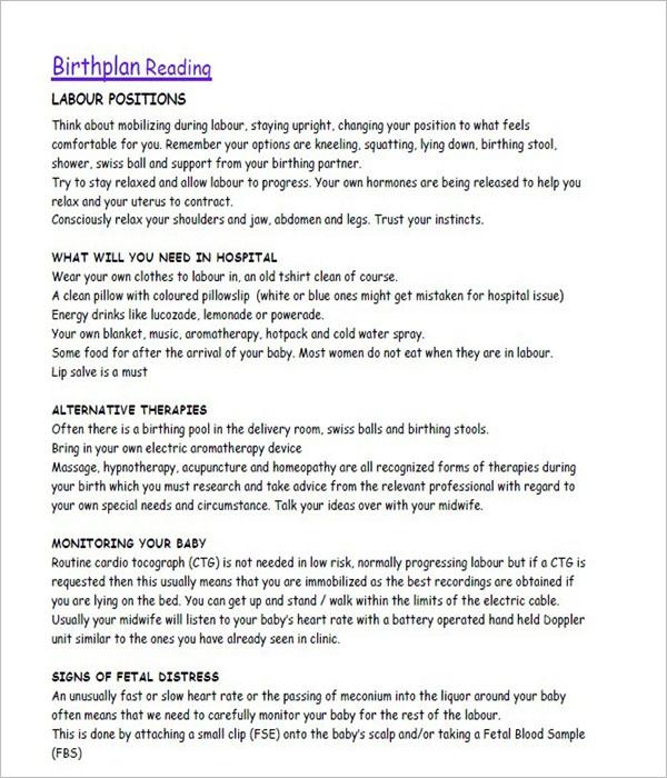 50  free birth plan templates word  pdf formats