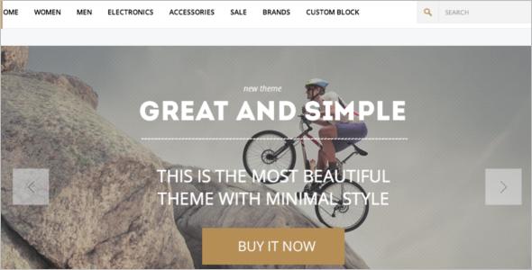 Top WordPress Woocommerce Theme