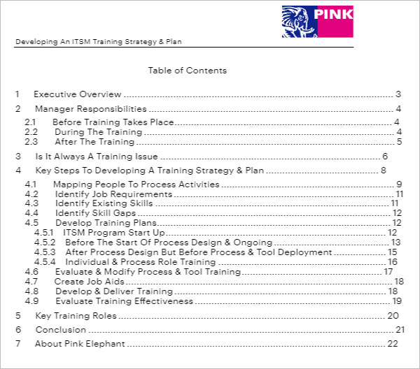 Training Plan Strategy Template
