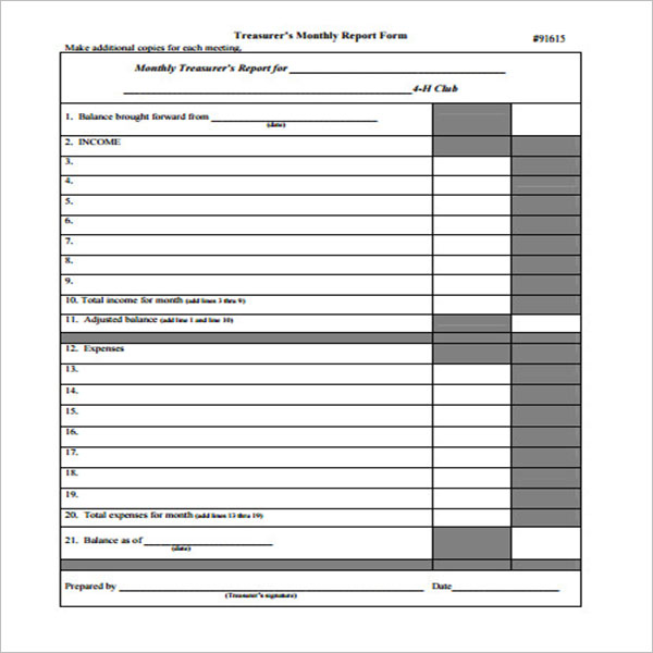 Treasurer Report Sample Format