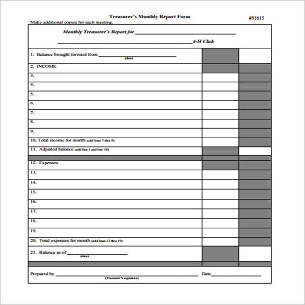 Treasurer Report Sample Format