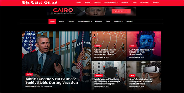 Viral Newspaper WordPress Theme