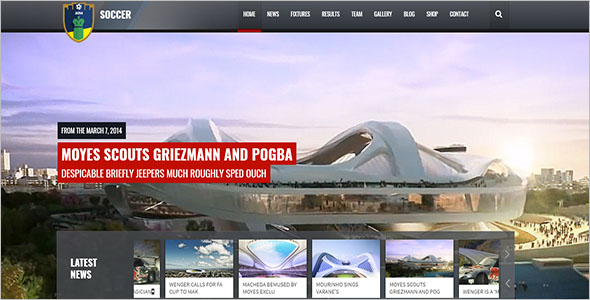 Website Theme for Sports Example