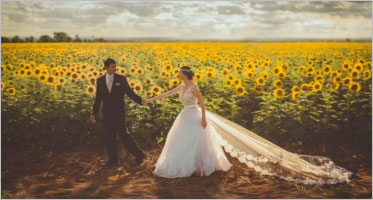 Wedding Landing Page Templates
