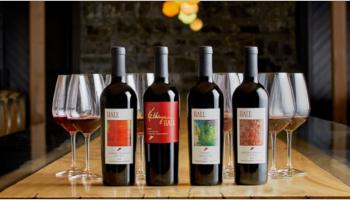 Wine Store VirtueMart Templates
