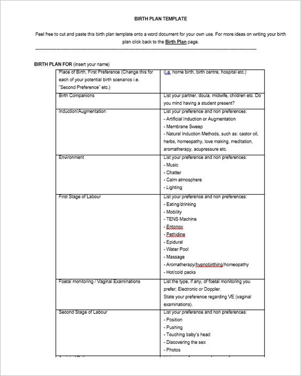 Writing A Birth Plan Template