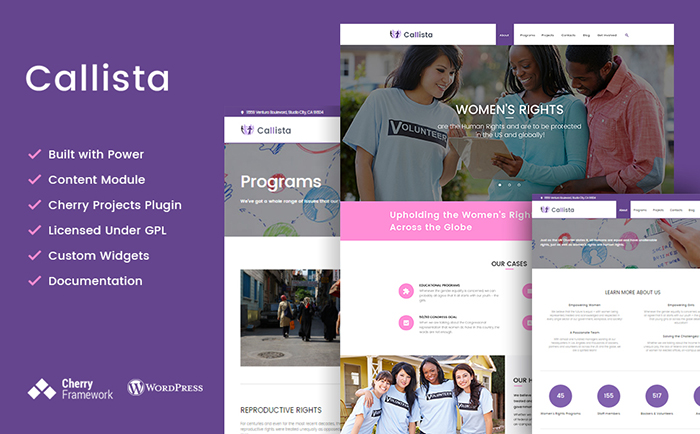 Charity & Non-profit WordPress Theme