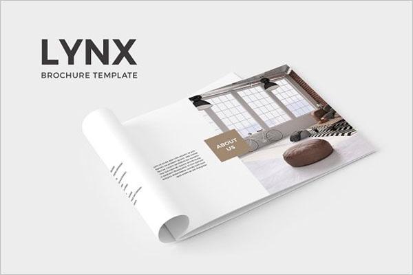 Best Printable Brochure Template