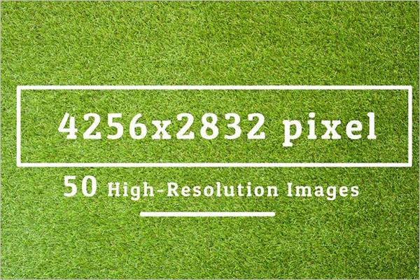 Carpet Texture Seamless Design