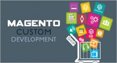 31+ Custom Magento Development Themes