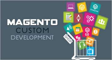 Custom Magento Development Themes
