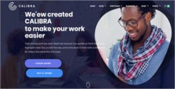 Ecommerce WordPress Responsive Theme