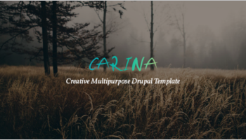 Fullscreen Drupal Themes