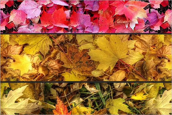 Leaves Carpet Pattern Design