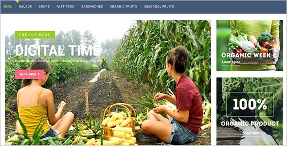 Organic Shop Responsive OpenCart Theme
