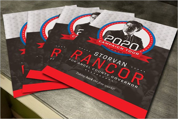 Political Campaign Flyer Examples