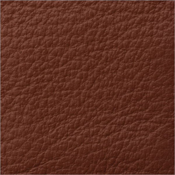 Sample Leather Texture Design