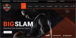 Volleyball Tournament WordPress Theme
