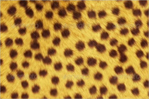 Animal Texture Backgrounds