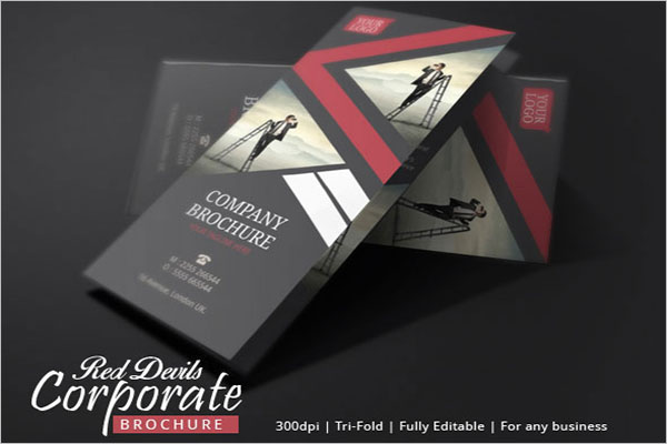Brochure Design For Your Business