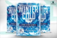 Cold Winter Flyer