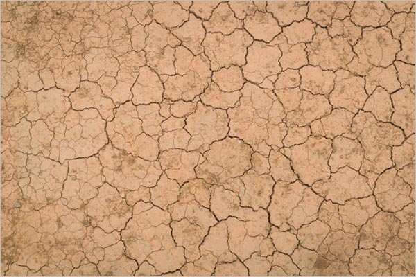 Dry & Cracked Ground Texture