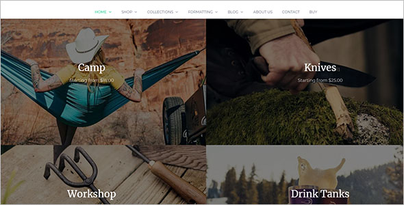 ECommerce WordPress Opencart Theme