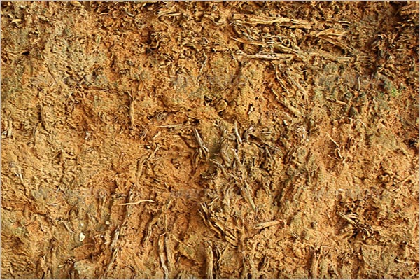 Earth Texture Photoshop