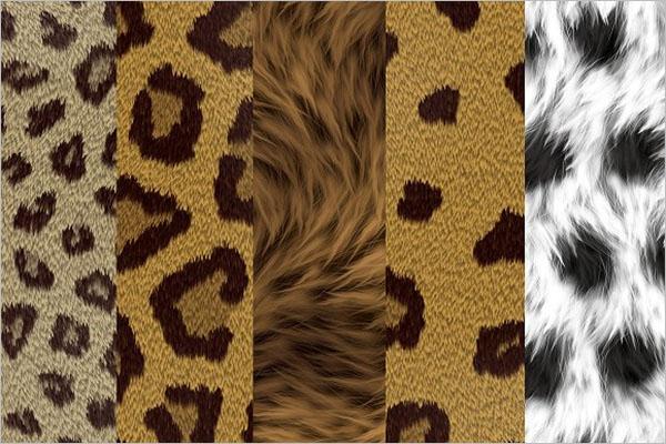 Excellent Animal Texture