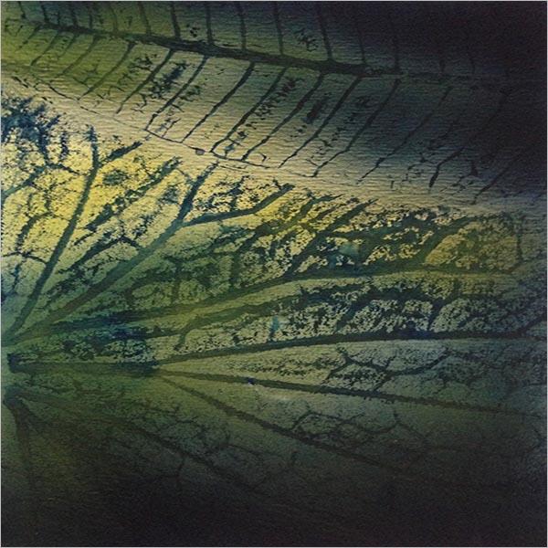 Leaf Textures Photoshop