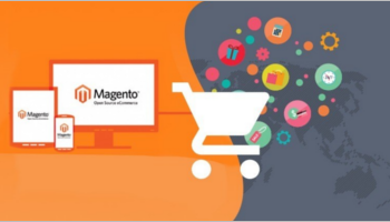 Magento Integration Themes