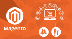 26+ Best Magento Online Store Themes