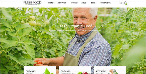 Organic Food Opencart Template
