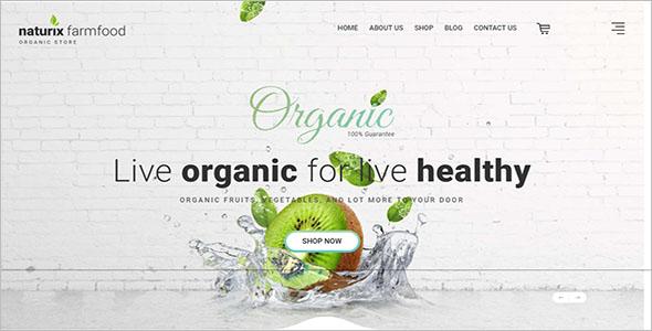 Organic Store Opencart Theme