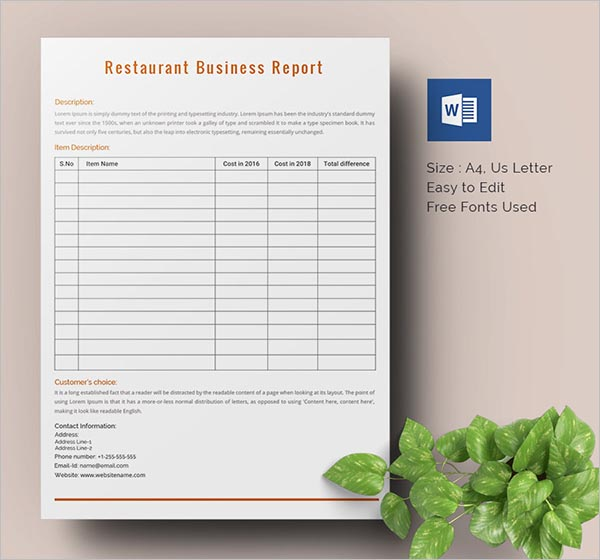 Periodic Business Progress Report Template